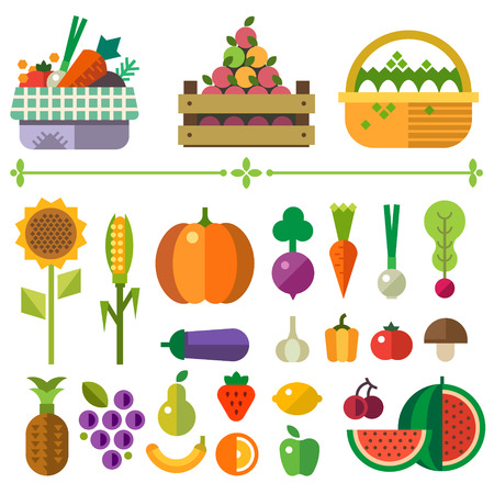 Basket with fruits and vegetables. Farm. Elements and sprites. Carrot pumpkin onion tomato pepper pineapple cherry banana grapes apple pear. Vector flat illustrationsのイラスト素材