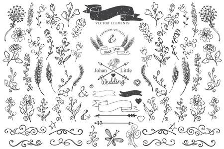 Doodle borders,ribbons,floral decor element for logo