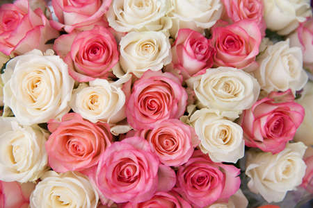 Photo for White and pink roses, close-up. Large bouquet of roses. - Royalty Free Image