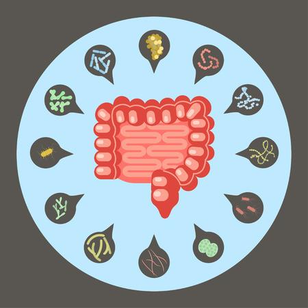 Illustration pour Set of enteric bacteria - image libre de droit