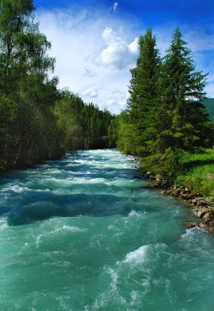 Mountain river Kucherla, forest, Altai, Russia