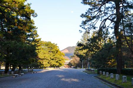 Tatsuo115170200008