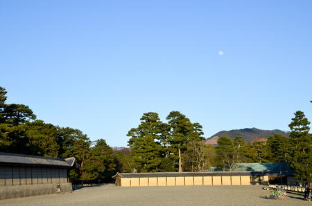 Tatsuo115170200053