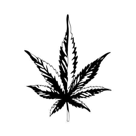 Illustration for A cannabis leaf isolated on a white background. Black and white marijuana leaf. Ganja is a Rastafarian symbol.Vector - Royalty Free Image
