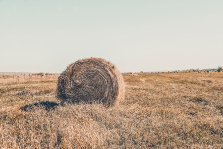 Photo pour Summer or autumn day, blue sky. Beautiful landscape. Agricultural field. Hay bale in field. - image libre de droit