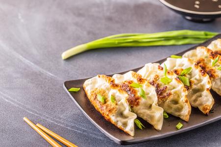 Foto de Gyoza or dumplings snack with soy sauce, selective focus, copy space. - Imagen libre de derechos