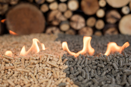 Foto per Two kind of pellets - pine and sunflower- in fire - Immagine Royalty Free