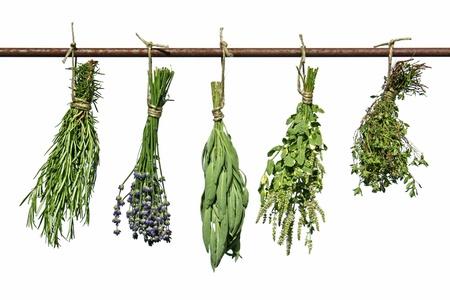 herbs hanging upside-down