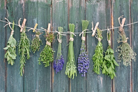 various herbs haging upside-down on line