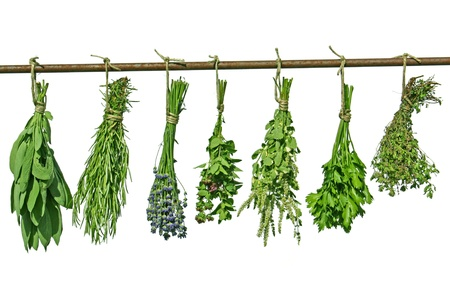 herbs hanging upside-down