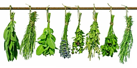 various herbs hanging on a rod, isolated