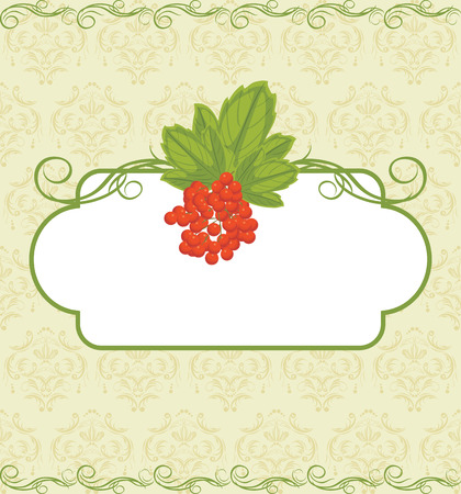 Decorative frame with red berries bunch on the ornamental background