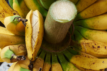 Close-up view of a bunch of tasty ripe banana
