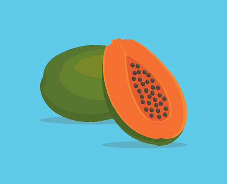 papaya single isolated object with vector graphic illustration