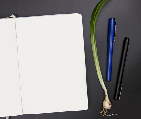 White sketchbook on black table. Artist workplace top view photo. Blank page of sketchpad and lily plant flat lay. Empty book page mockup for drawing or logo. Spring background with open sketchbook