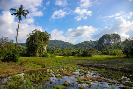 Photo pour Tropical landscape with greenery and mountains in sunny day. - image libre de droit