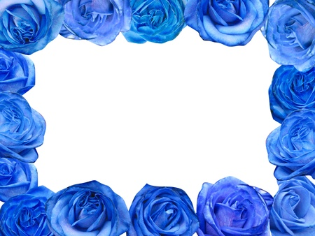 Decorative blue roses frame isolated in black