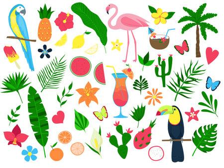 Illustration pour Colorful set of summer tropical elements. Leaves and flowers, fruits, cocktails, birds. Set of stickers, print. Vector illustration - image libre de droit