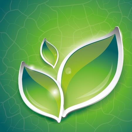 Green leaves design, vector illustration, eps-10