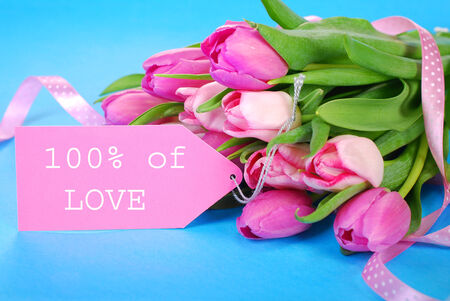 bunch of fresh pink tulips  lying on blue background and paper tag