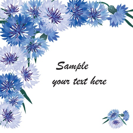 floral frame with copy space  Greeting card with blue cornflower