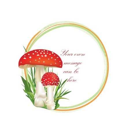 Summer forest frame circle shape  Red poison mushroom isolated on white background  Vector illustration set