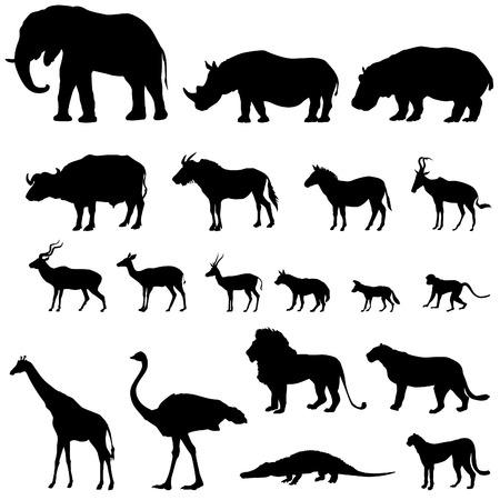 Ilustración de African animals silhouettes set. Vector animals of tropical zone icons collection. - Imagen libre de derechos