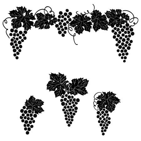 Vine grape ornament element decor set.