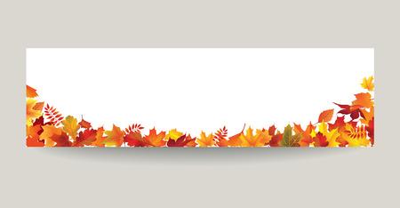 Fall Leaf Nature Banner Autumn Leaves Background Season