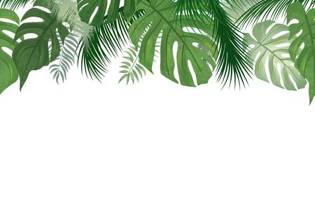 Illustration pour Floral seamless pattern. Tropical leaves background. Palm tree leaf nature border - image libre de droit
