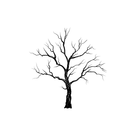 Illustration for Tree without leaves isolated. Nature sign Vector illustration - Royalty Free Image