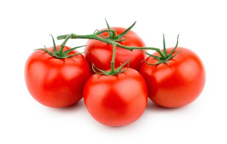 Photo for Tomatoes isolated on white background. Front view - Royalty Free Image