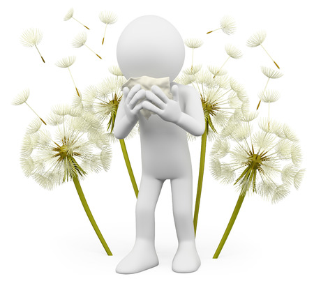 3d white people. Spring allergies. Dandelion. Isolated white background.