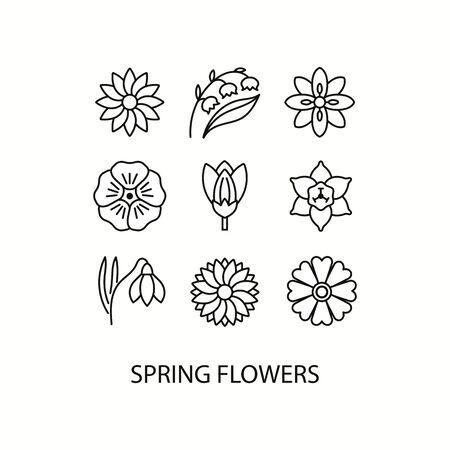 Illustration pour Spring flowers flat line icons set -  narcissus, crocus, lily of the valley, flax, snowdrop. Vector illustration. - image libre de droit