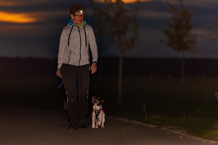 Foto de Woman goes with a dog walking in the autumn at night with flashlight - jack russell terrier doggy - Imagen libre de derechos
