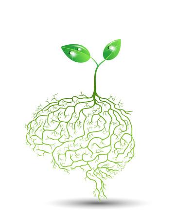 Illustration pour Young plant with brain root, vector - image libre de droit