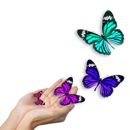 hands with butterflies