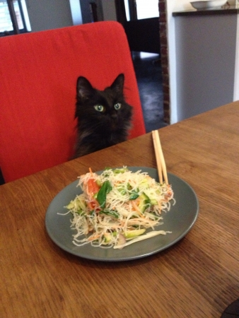 The black cat red seat and pad thai