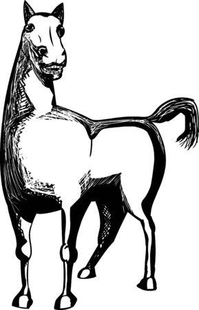 Theblackrhino150800332