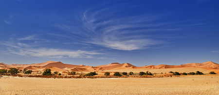 desert of namib with orange sand dunes.