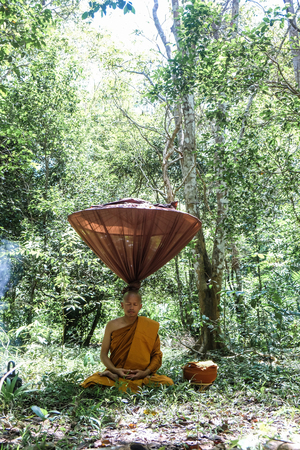 Buddha monk make maditation in deep forest spiritul and peaceful