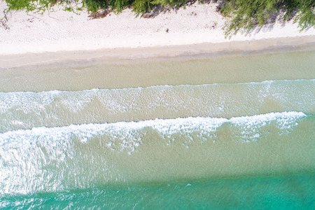Amazing serenity tropical sea beach with tree nature landscape aerial view