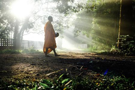 Photo pour Buddhist monk meditation in tropical forest, Spiritual concept - image libre de droit