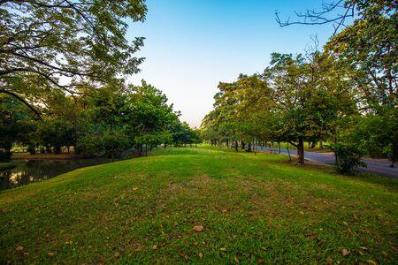 Foto de Sunset at city public park colorful sky green field nature landscape - Imagen libre de derechos