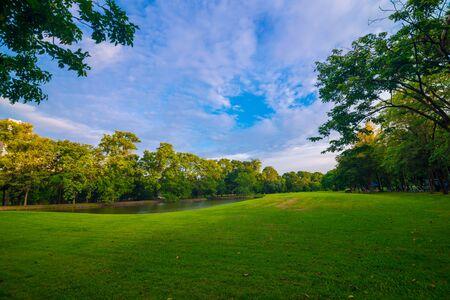 Foto de Green public park meadow blue sky for leisure landscape - Imagen libre de derechos