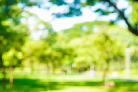 Foto de Abstract blurred green city park with tree bokeh nature background - Imagen libre de derechos