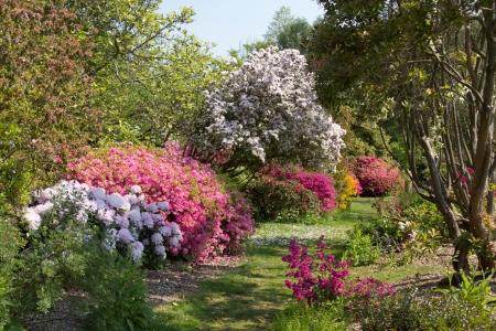 Furzey - English country garden in spring