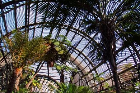 Botanical Garden Dome in Balboa Park, San Diego, CA