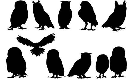 Illustration for Owl  silhouette vector illustration - Royalty Free Image