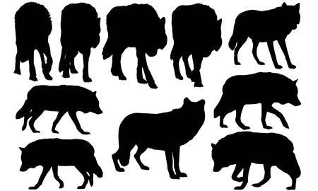 Illustration pour Wolf silhouette illustration - image libre de droit